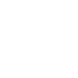 Karnonos Reflexologie Meridian Massage